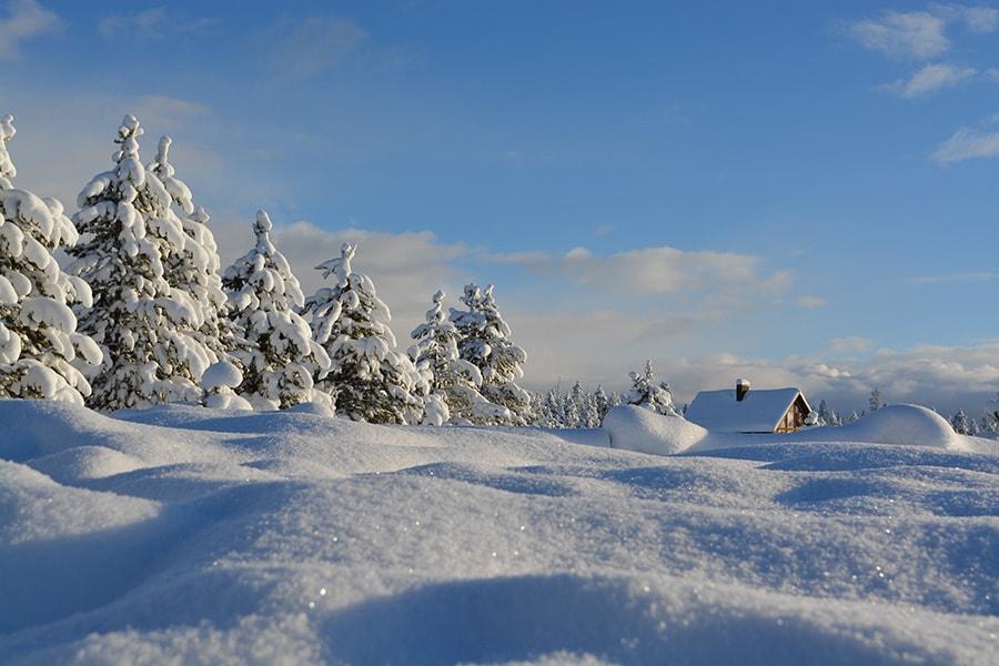 plyco-winter-landscape-min