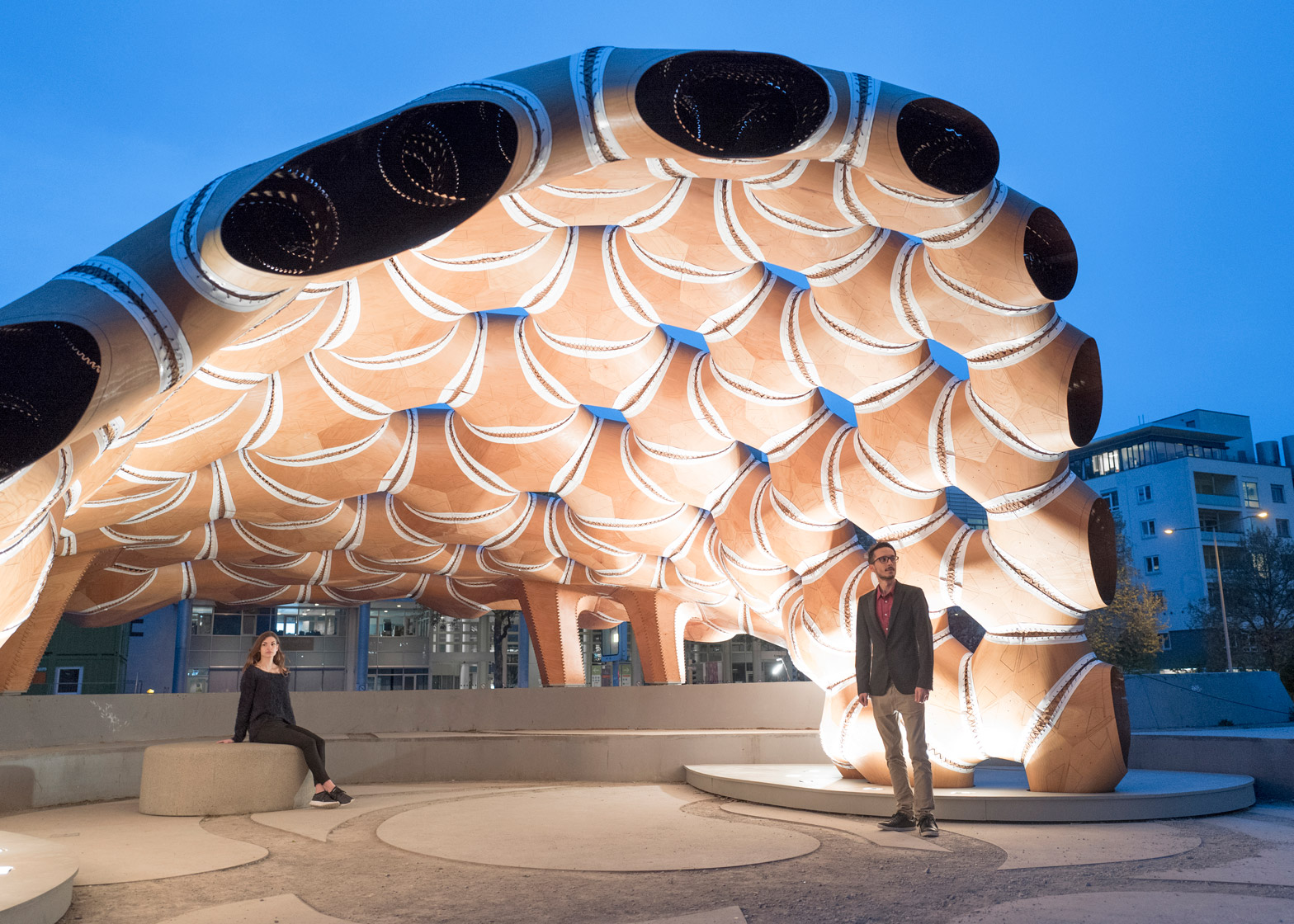 Plywood sheets used to build a Pavilion at the University of Stuttgart