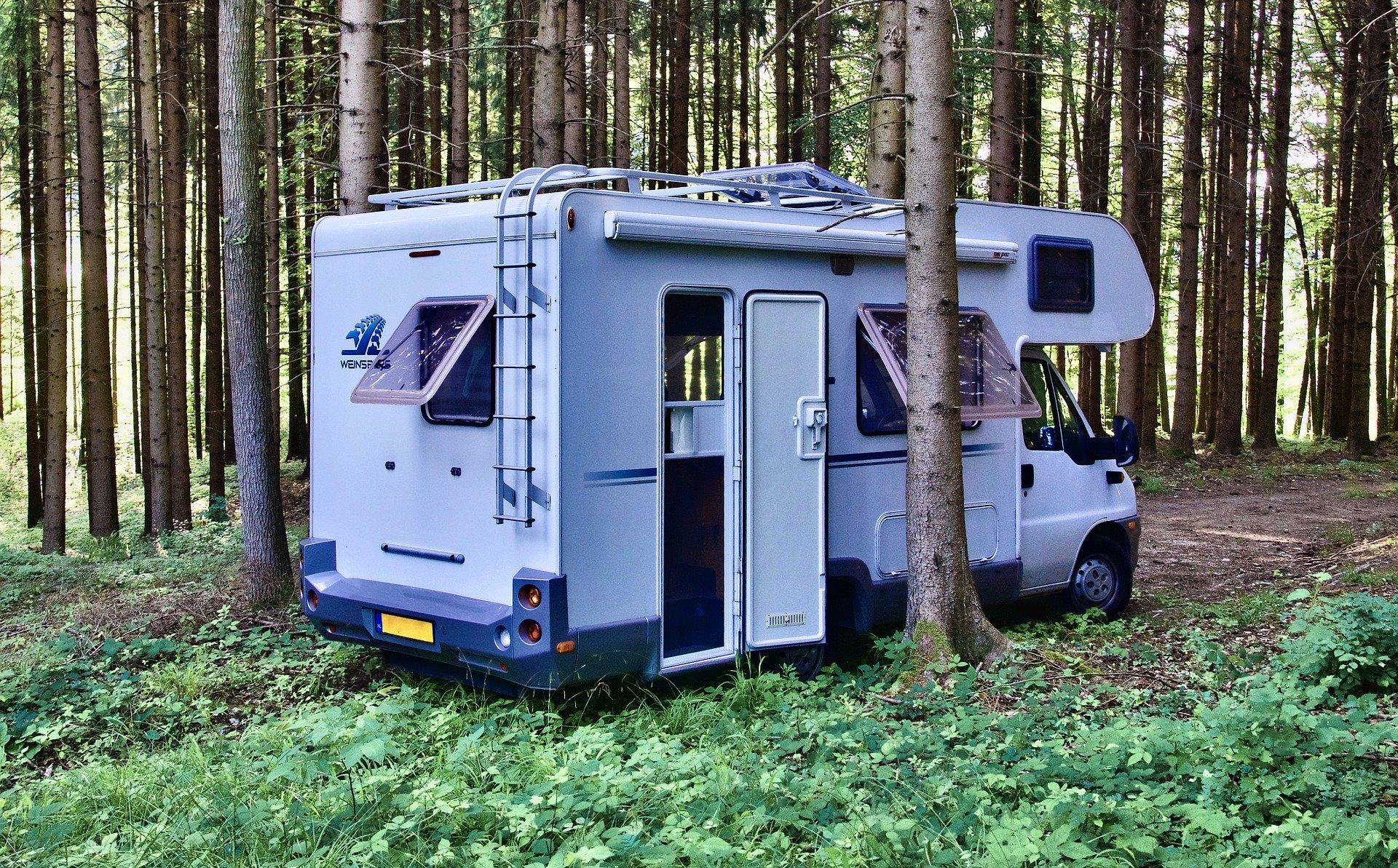 best plywood for campervans and caravans